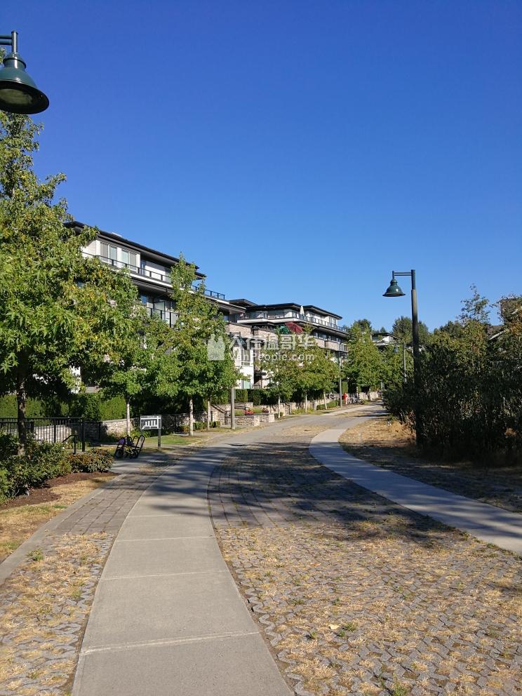 近edmonds station,紧邻Taylor Park小学,2室2位公寓,9月1日起出租