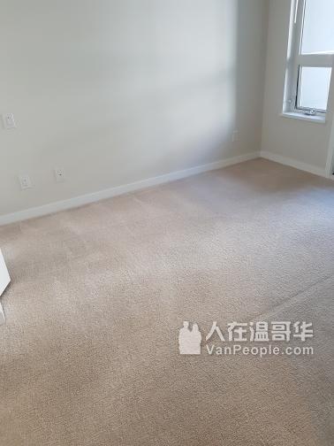 【丽雅保洁公司】专业全屋清洁:退房/出售/入住/装修/洗地毯/玻璃/垃圾清运等保洁服务