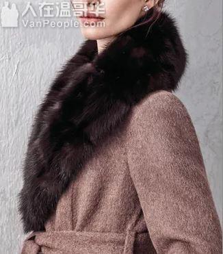 寻找服装设计师,冬季皮毛服饰, 围巾领口
