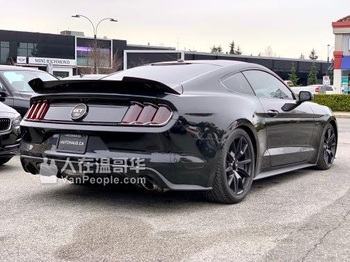 2015 Ford Mustang GT 50 Years Edition