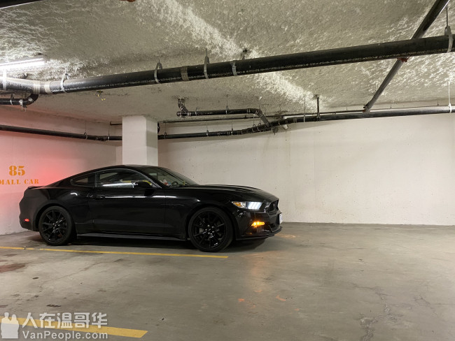 2017 mustang gt black out lowest price in Vancouver