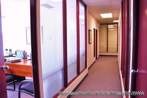 公司注册、报税、办公室出租、秘书服务、业务洽谈、客户服务