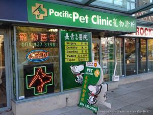 长青宠物医院 - 温哥华唯一华人所开的宠物医院