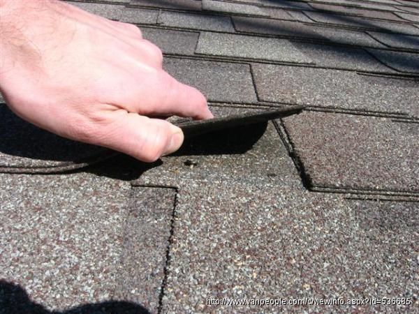 修屋顶漏水 清洁高压冲洗 修围墙水泥地 造标准型工具房 -- 阿炯师傅