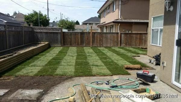 一心园艺:打草根,剪草,修树型等园艺服务