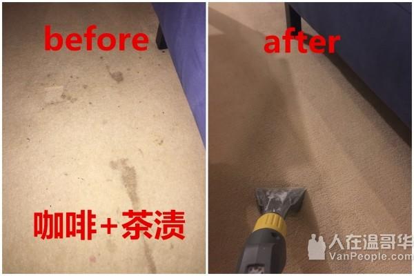 Nulex家政清洁,地毯清洗,除螨。IICRC认证地毯清洗师,BBB商业信誉局认证