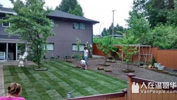 高师傅帮您做花园 价格公道 随叫随到 旧园改造 创意翻新 服务大温地区
