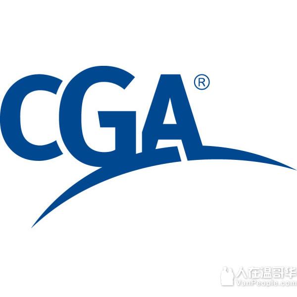 李崇注册会计师, 提供个人和公司会计税务及财务咨询服务