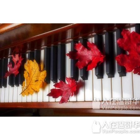 楓葉音樂學校 钢琴、小提琴、吉他、长笛、萨克斯管等 大溫哥華