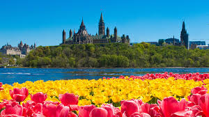 枫情定制旅游 让你有回家的感觉 ! 我们服务-温哥华/班夫/多伦多/蒙特利尔/渥太华/魁北克