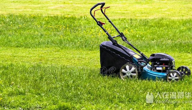 华翰园艺 花园整理、修剪花树、清理杂草、草坪修剪、精打草根等各项园艺服务