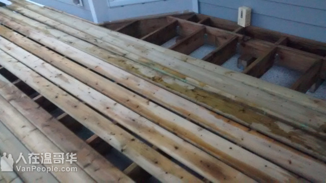 老字号 精工专业装修  内外油漆 木地板 铺贴瓷砖  地板硬化Deck 厨卫翻新