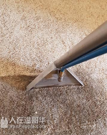 【大温红日清洁洗地毯】室内清洁洗地毯除螨搬家收垃圾高压冲洗花园,一条龙服务洗地毯特价3房仅$99