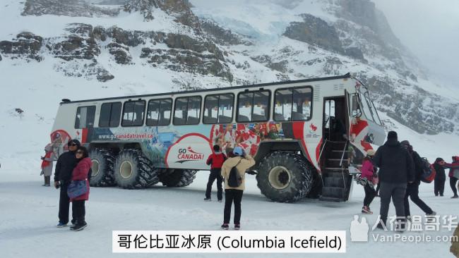 专业导游 uncle ben : 旅游包车, 定制行程, 不以价钱平抢客, 以服务好为主打