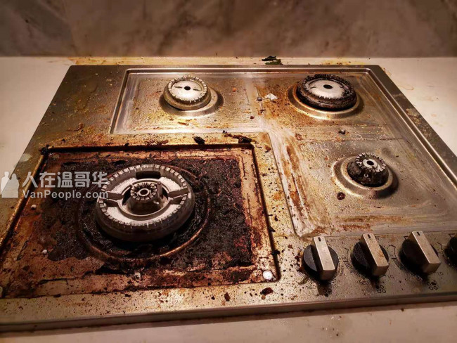 $35元大机高压洗地毯(灭菌特惠)---- 海豹清潔