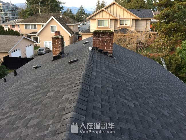 政府注册,专业屋顶更换翻新,屋顶苔藓,水槽清洁,外墙油漆,高压清洗