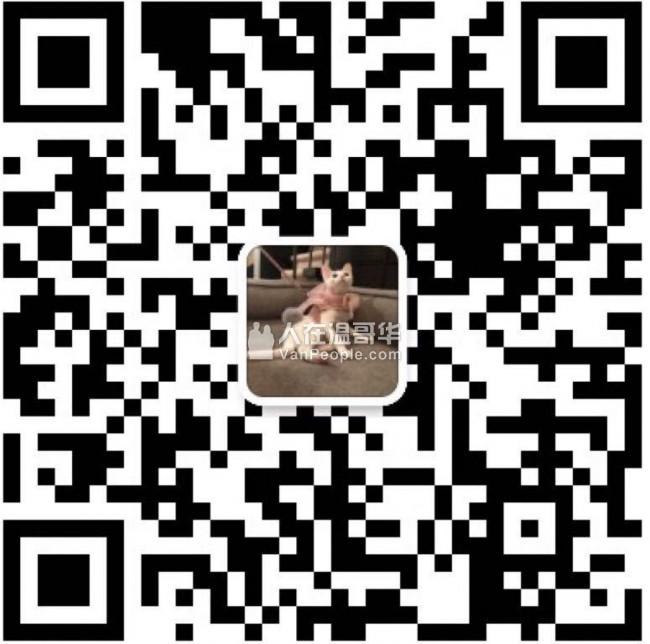 ❤BUBBLE PAWS❤繁育甜美度超高的德文卷毛猫 坐标加拿大温哥华 TICA/CFA注册猫舍