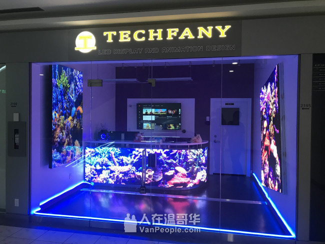 Techfany Technology | 科尼科技 | 專業 LED 顯示屏和動態廣告設計