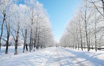 温村:不下雨了!咱周末下雪!
