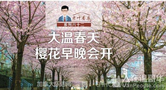 高度 ◇ 温哥华房地产市场的樱花 早晚会开