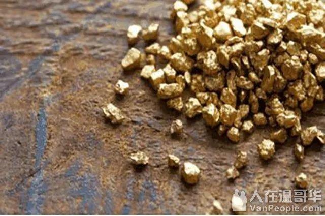 """地球上""""最贵""""的河,随便一抓都有黄金,百年间越淘越多"""