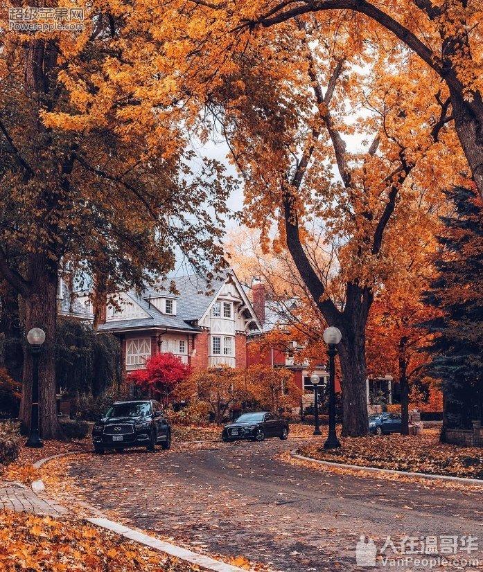 预测2026年多伦多独立住宅均价将是2018年的一倍多