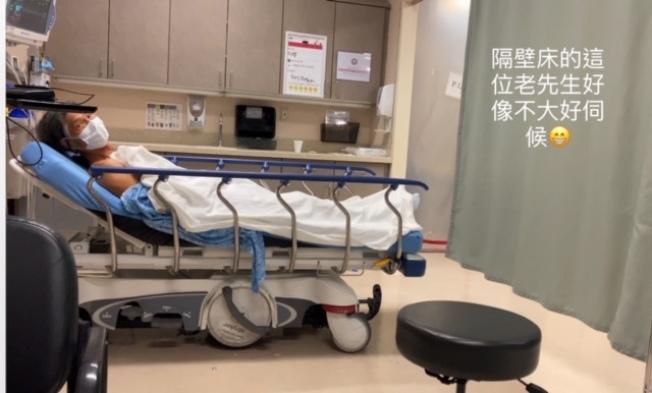 意味 自家 中毒 日本小児心身医学会