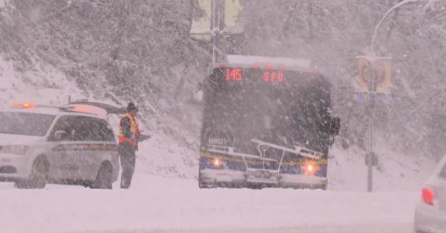 专家预测:温哥华今年冬天又要被大雪埋了!