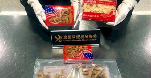 华人回国带花旗参被海关查获!花旗参究竟能不能带?