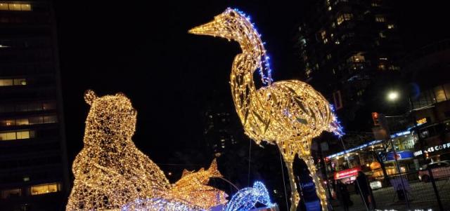 网友分享大温圣诞灯饰美景